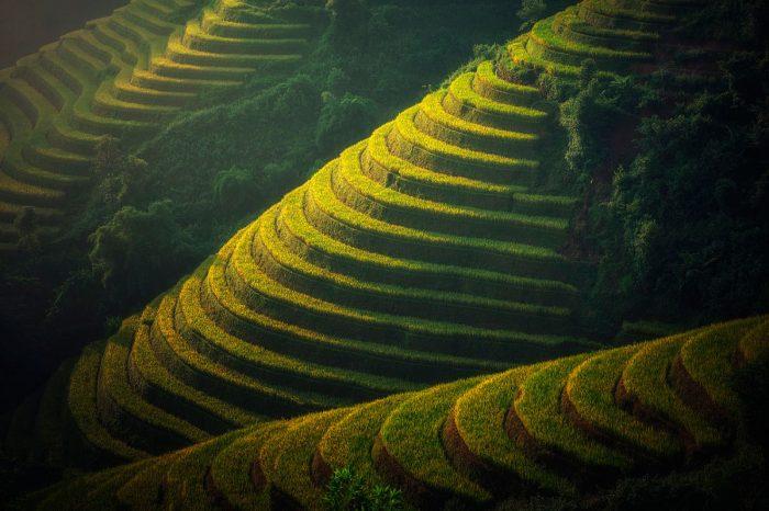 Indochina  Profunda