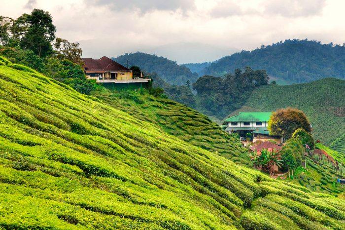 Malasia – Península Malaya y Playa