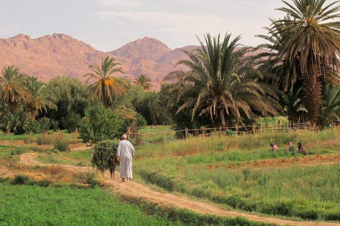 Marruecos – Navidad y Año Nuevo en el Desierto