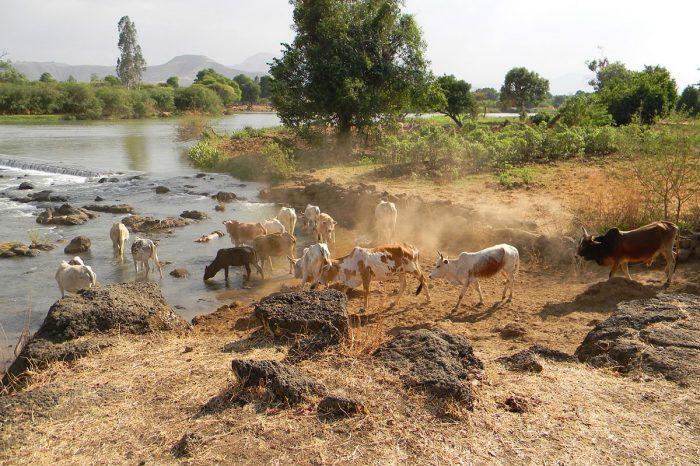 Etiopía – El Sur Exhaustivo