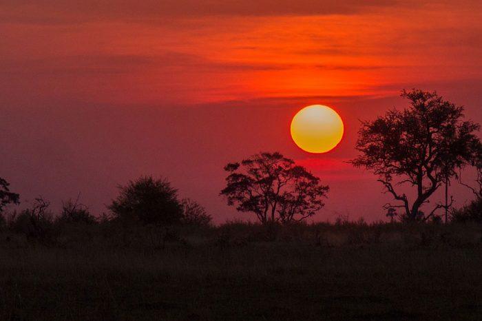 Zimbabue y Botsuana – Ruta del Elefante en Camión